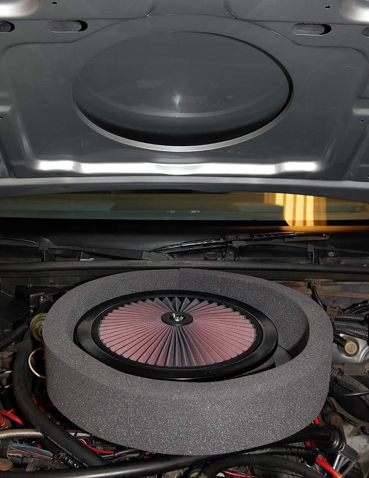 Air Cleaner Through Hood : Functional air cleaner for goodmark cowl hood
